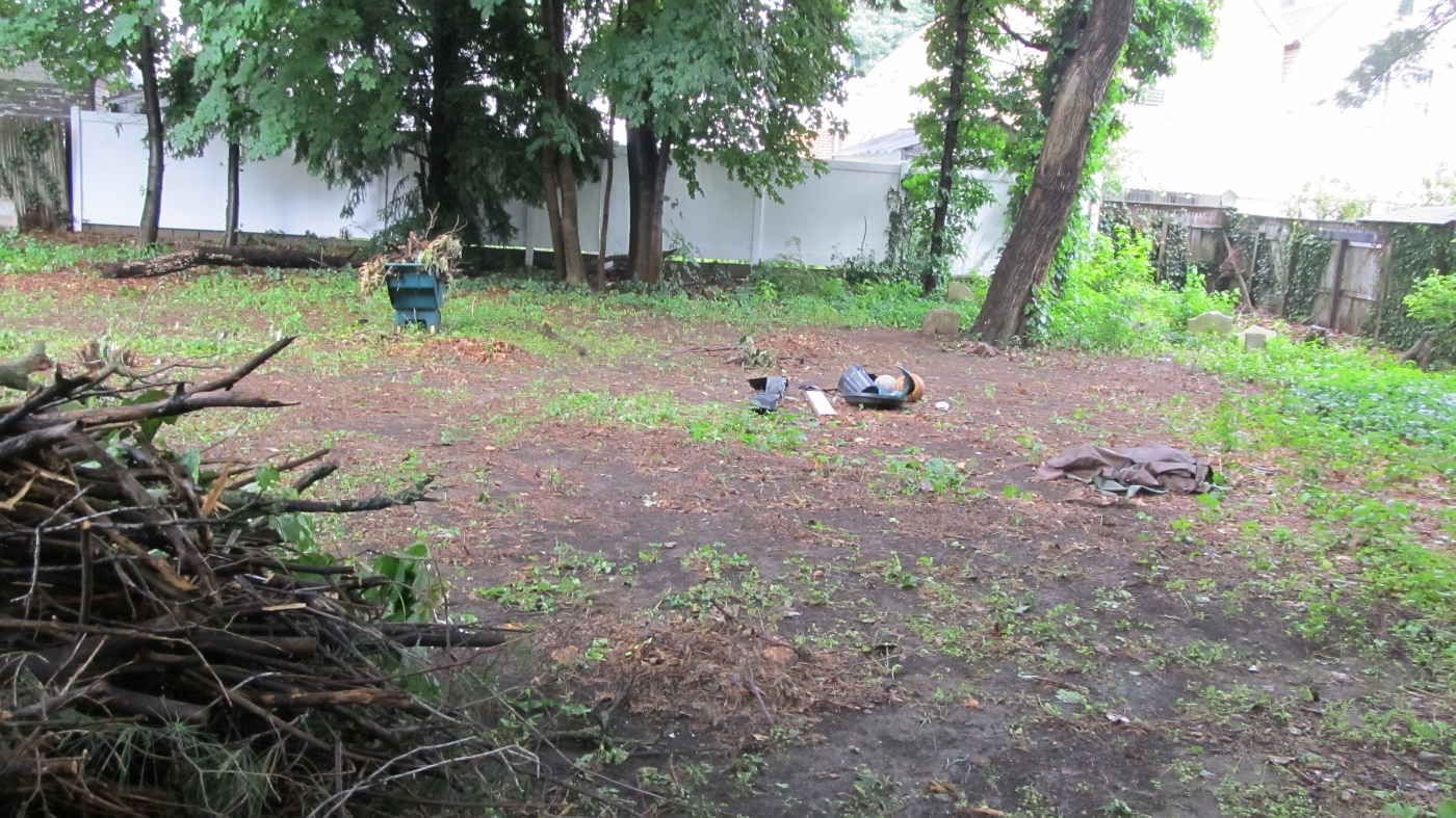 historic woodhaven cemetery cleanup research project set for 2nd